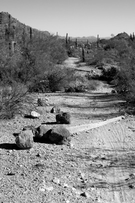 usery-mountain-1.jpg